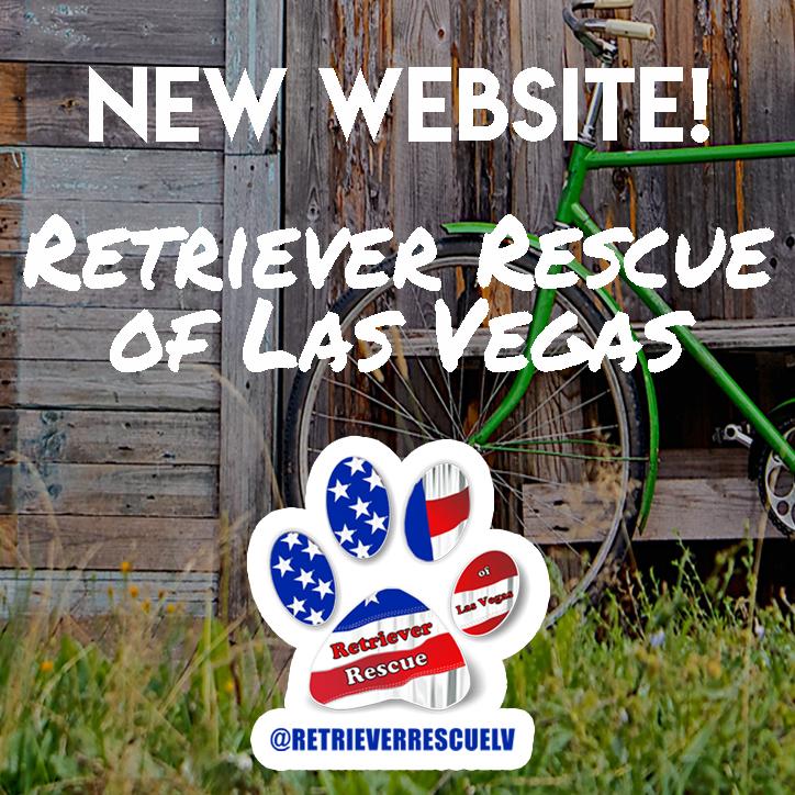 Retriever Rescue of Las Vegas